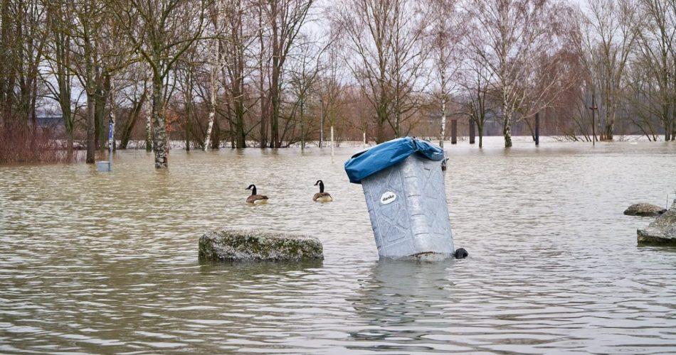 Waste Management Gold River ca