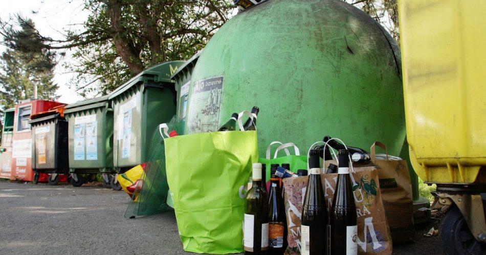 Waste Management Tree Pick Up