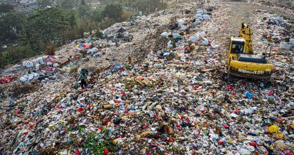 Waste Management Georgetown de